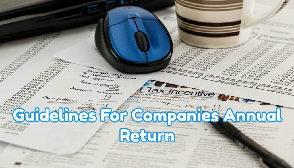 guidelines for companies annual return